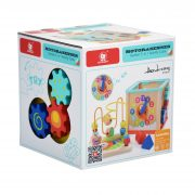 Activity Cube 5 in 1