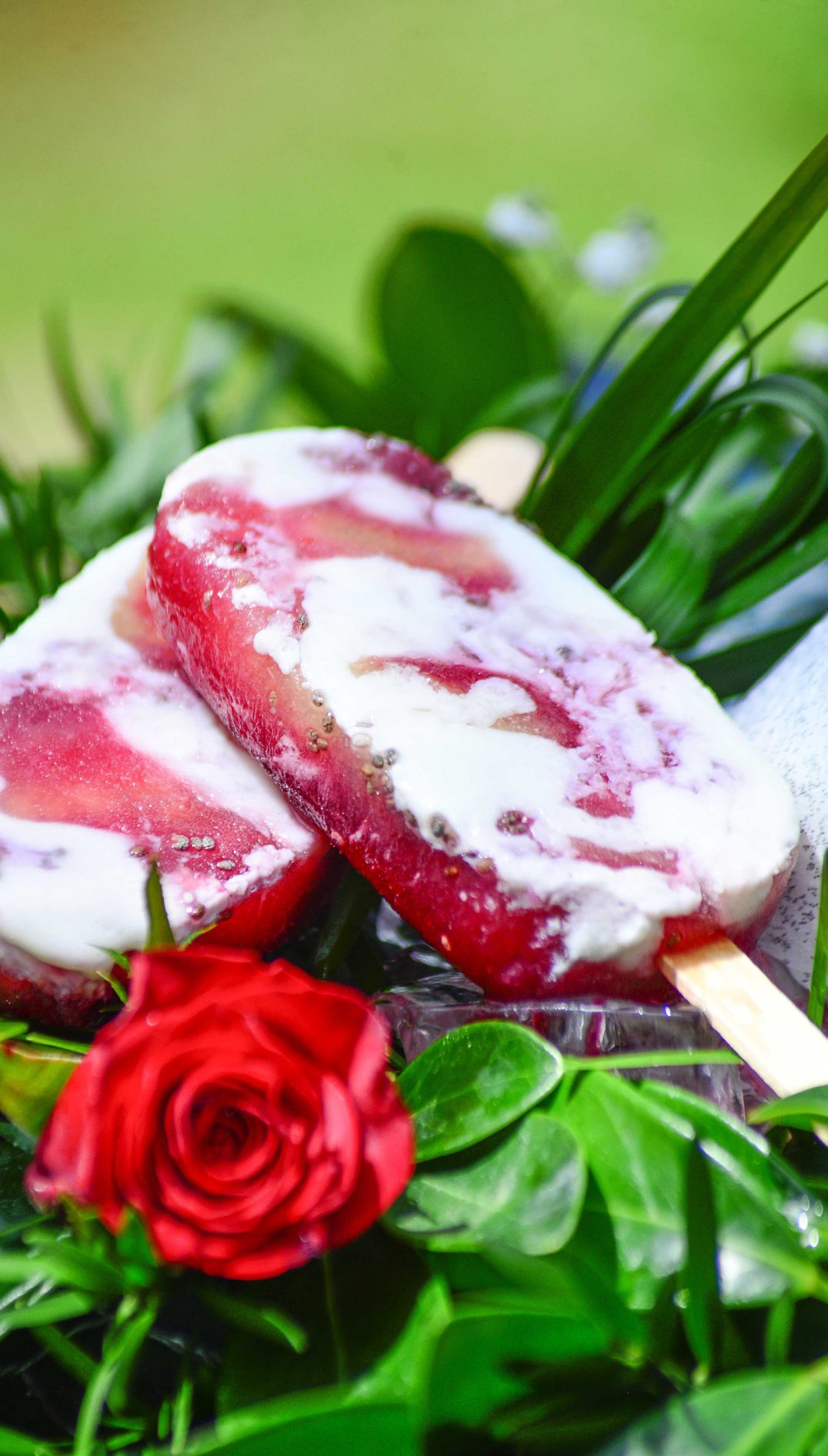 POPSICLE-GLACE-recette