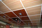 Faux-plafond en ravenale_3