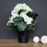 Decorative pot with Hydrangea