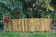 Decorative bamboo border